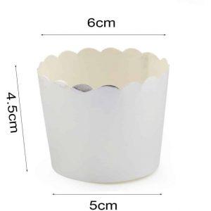 Silver Cupcake Cases (12)